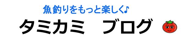 タミカミブログ